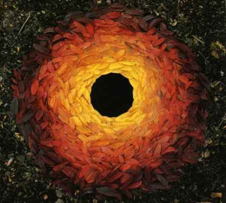 http://naturalismo.files.wordpress.com/2008/10/andy_goldsworthy_rowan_leaves_with_hole.jpg